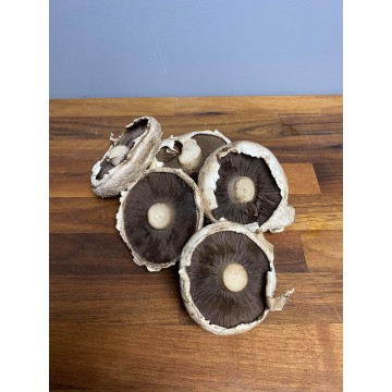 Flat Mushroom (Punnet)