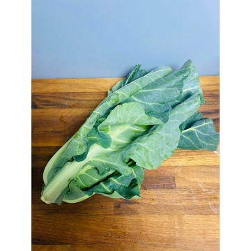 Spring Cabbage (each)