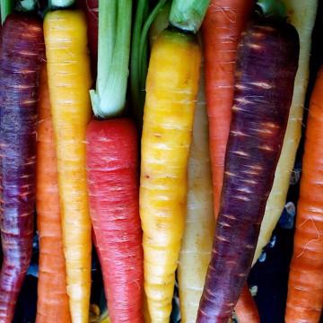 Heritage Carrots 500g