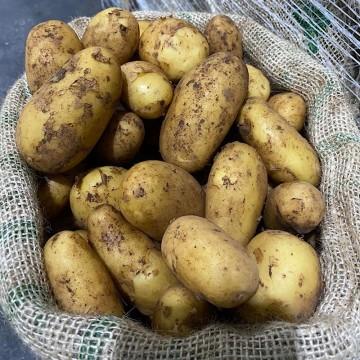 Majorcan Potatoes per kg
